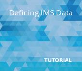 Defining IMS Data