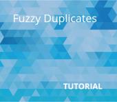 Fuzzy Duplicates