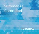 Summarize Command