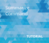Summarize Command